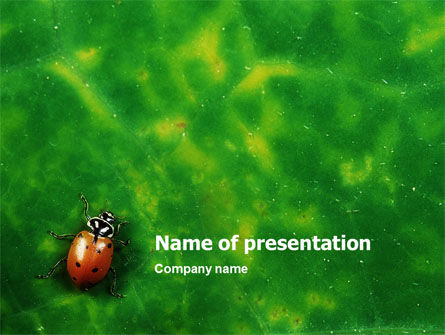 Nature & Environment: Bug PowerPoint Template #01745