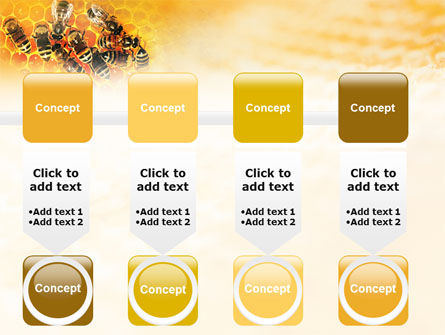 Cells and Bees PowerPoint Template Slide 18