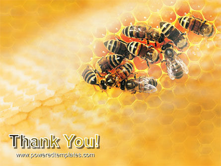 Cells and Bees PowerPoint Template Slide 20