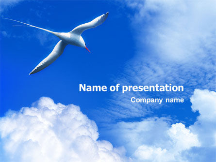 Nature & Environment: Sea Gull PowerPoint Template #01773