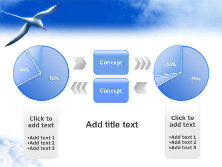 Sea Gull PowerPoint Template Slide 11