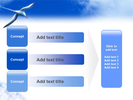 Sea Gull PowerPoint Template Slide 12