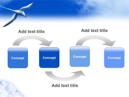 Sea Gull PowerPoint Template Slide 4