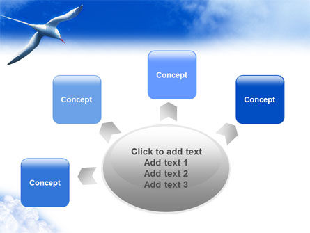 Sea Gull PowerPoint Template Slide 7