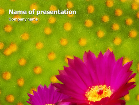 Bright Flower PowerPoint Template, 01777, Nature & Environment — PoweredTemplate.com