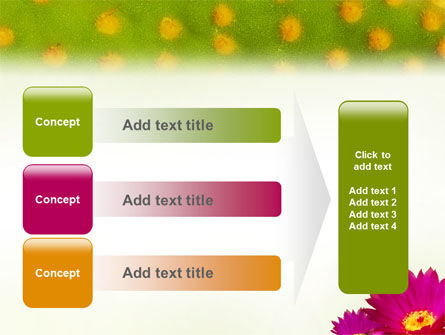 Bright Flower PowerPoint Template Slide 12