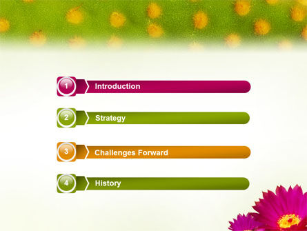 Bright Flower PowerPoint Template, Slide 3, 01777, Nature & Environment — PoweredTemplate.com