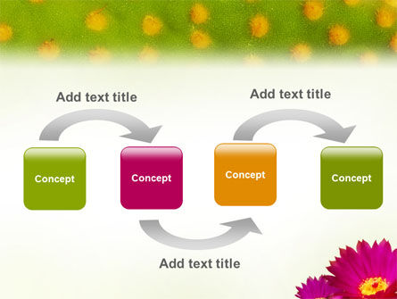 Bright Flower PowerPoint Template, Slide 4, 01777, Nature & Environment — PoweredTemplate.com