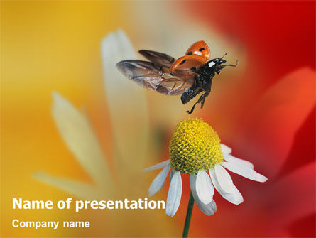 Ladybug PowerPoint Template, 01812, Nature & Environment — PoweredTemplate.com