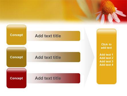 Ladybug PowerPoint Template Slide 12