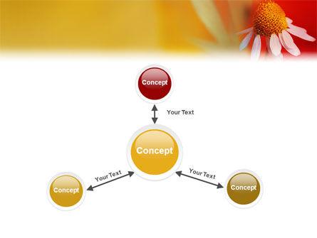 Ladybug PowerPoint Template Slide 14