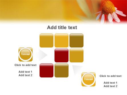 Ladybug PowerPoint Template Slide 16