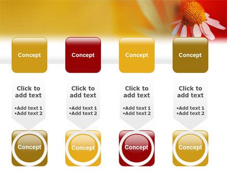 Ladybug PowerPoint Template Slide 18