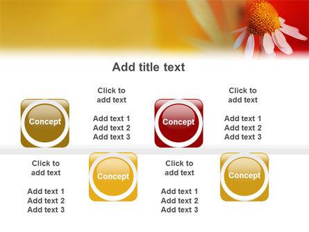 Ladybug PowerPoint Template Slide 19