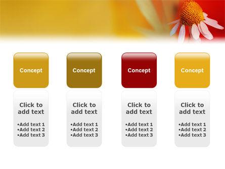 Ladybug PowerPoint Template Slide 5