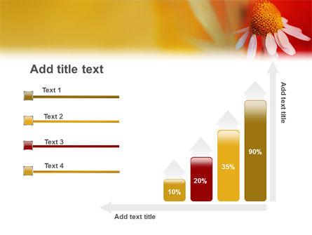 Ladybug PowerPoint Template Slide 8