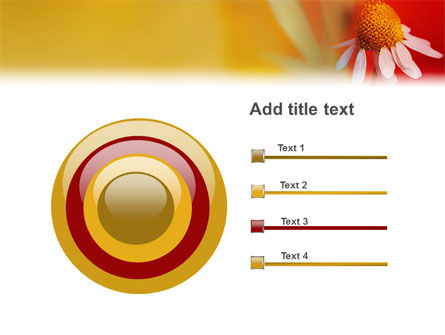 Ladybug PowerPoint Template Slide 9