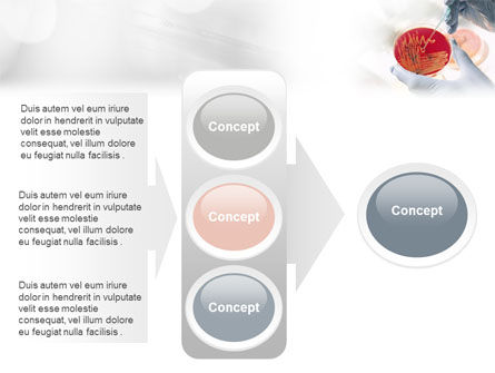Microbiology PowerPoint Template Slide 11