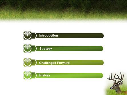 Deer PowerPoint Template, Slide 3, 01838, Animals and Pets — PoweredTemplate.com