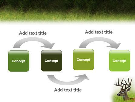 Deer PowerPoint Template, Slide 4, 01838, Animals and Pets — PoweredTemplate.com