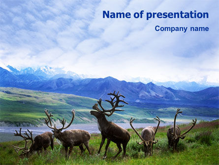Deers On The Mountain Pastures PowerPoint Template