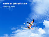 Nature & Environment: Flying Flamingo PowerPoint Template #01854