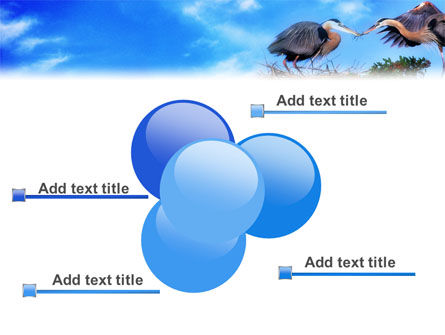 Nest PowerPoint Template Slide 10