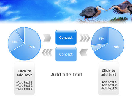 Nest PowerPoint Template Slide 11