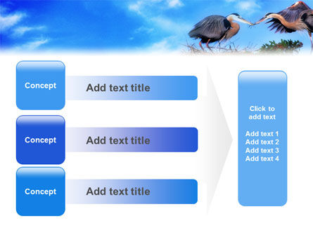 Nest PowerPoint Template Slide 12