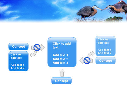 Nest PowerPoint Template Slide 13