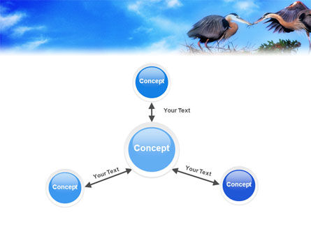 Nest PowerPoint Template Slide 14