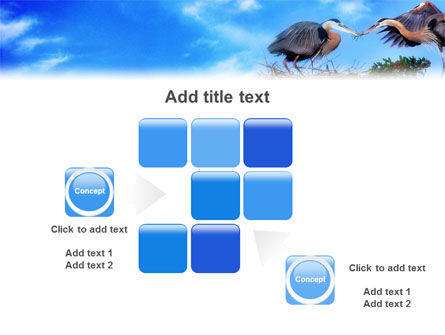 Nest PowerPoint Template Slide 16