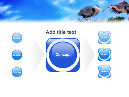 Nest PowerPoint Template Slide 17
