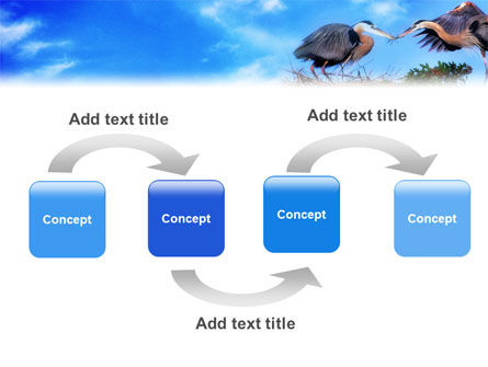 Nest PowerPoint Template Slide 4