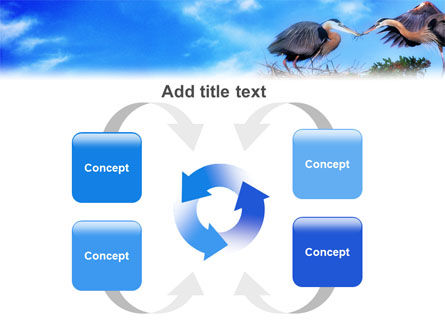 Nest PowerPoint Template Slide 6