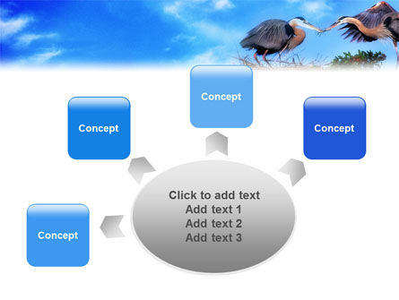 Nest PowerPoint Template Slide 7