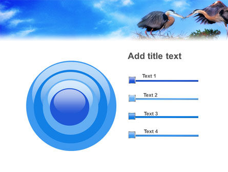 Nest PowerPoint Template Slide 9