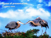 Nature & Environment: Nest PowerPoint Template #01876