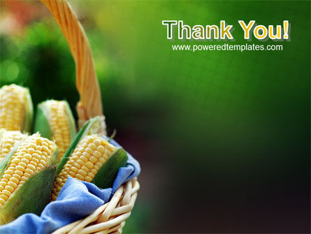Corn PowerPoint Template Slide 20