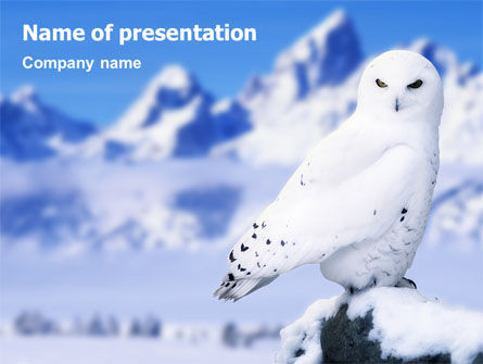 Animals and Pets: Snowy Owl PowerPoint Template #01902