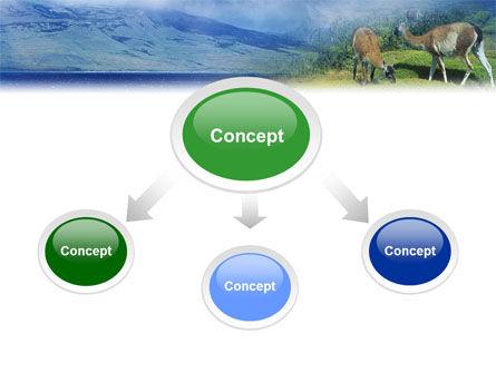 Pampa PowerPoint Template, Slide 4, 01950, Animals and Pets — PoweredTemplate.com