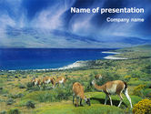 Animals and Pets: Modello PowerPoint - Pampas #01950