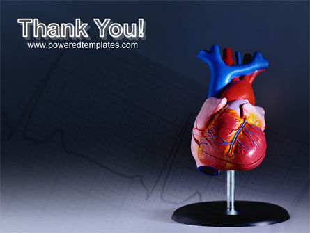 Heart Model PowerPoint Template Slide 20