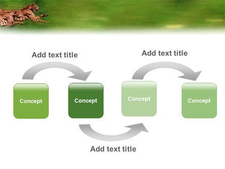 Wild Life PowerPoint Template, Slide 4, 02015, Animals and Pets — PoweredTemplate.com