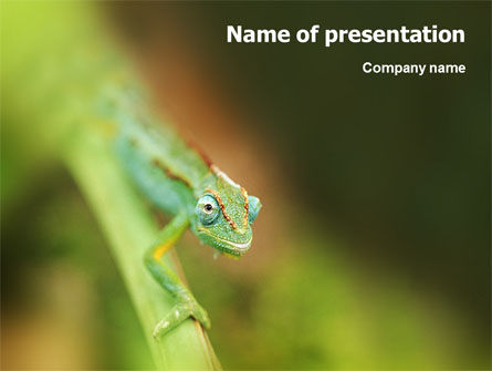 Animals and Pets: Modèle PowerPoint de caméléon #02101