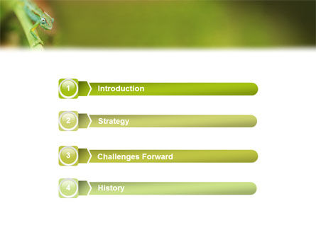 Chameleon PowerPoint Template, Slide 3, 02101, Animals and Pets — PoweredTemplate.com