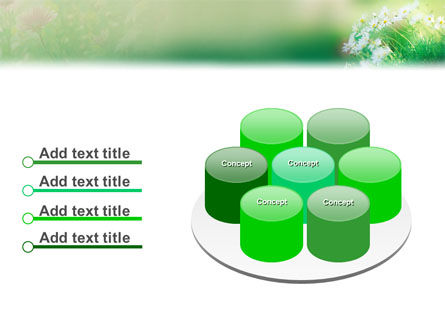 Spring Chamomiles PowerPoint Template Slide 12