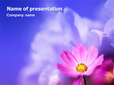 Nature & Environment: Flower PowerPoint Template #02128