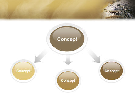 Crocodile PowerPoint Template, Slide 4, 02146, Animals and Pets — PoweredTemplate.com
