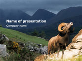 Animals and Pets: Modello PowerPoint - Montagna #02157